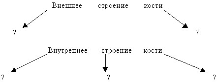 hello_html_19568386.jpg