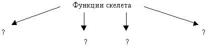 hello_html_m40b82b87.jpg