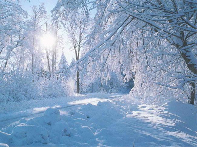 http://stat11.privet.ru/lr/0733cae0e07de4bd32b97dae624ad8e5