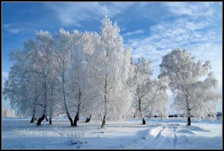 http://www.photoforum.ru/f/photo/000/423/423941_73.jpg