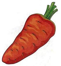 D:\Копилка\Наработки\Звуковка\Звук Р\Карточки\морковь.jpg