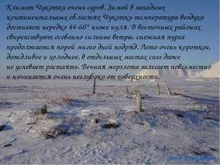 Климат Чукотки очень суров. Зимой взападных континентальных областях Чукотк