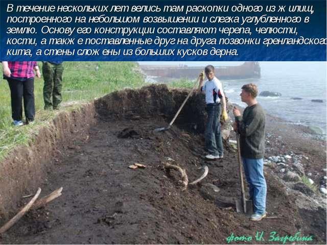 В течение нескольких лет велись там раскопки одного из жилищ, построенного н...