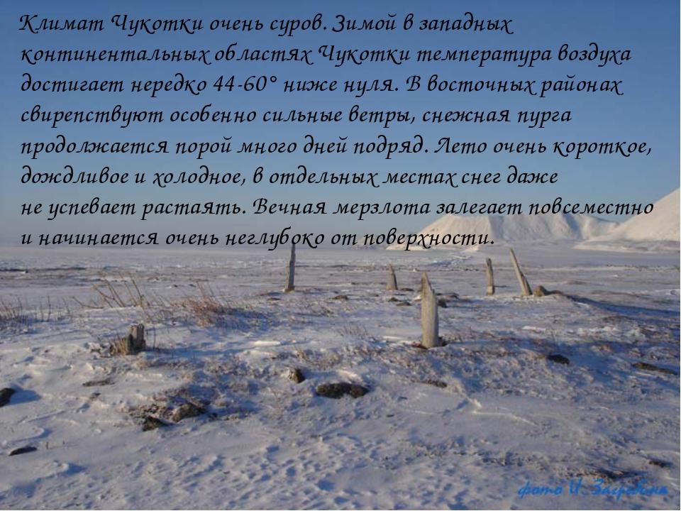 Климат Чукотки очень суров. Зимой взападных континентальных областях Чукотк...