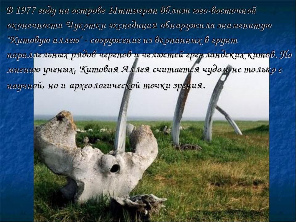 В 1977 году на острове Ыттыгран вблизи юго-восточной оконечности Чукотки экс...