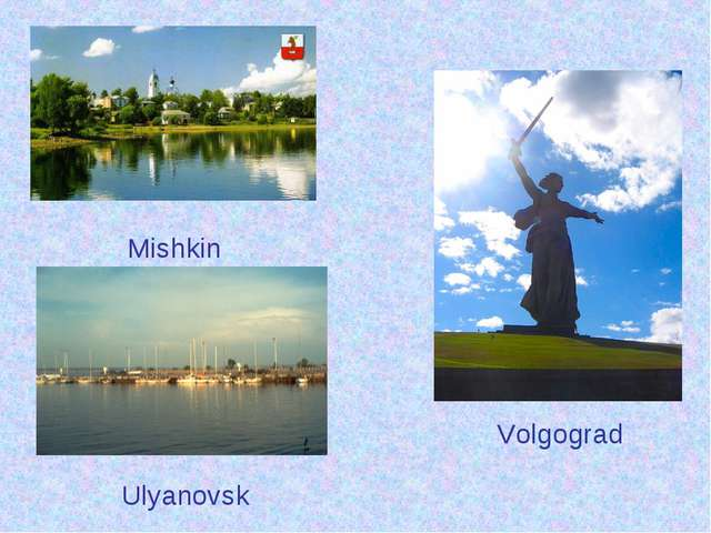Mishkin Volgograd Ulyanovsk