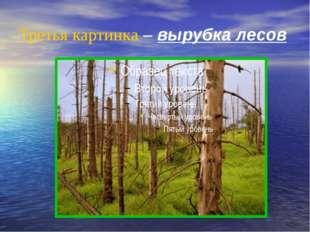 Третья картинка – вырубка лесов