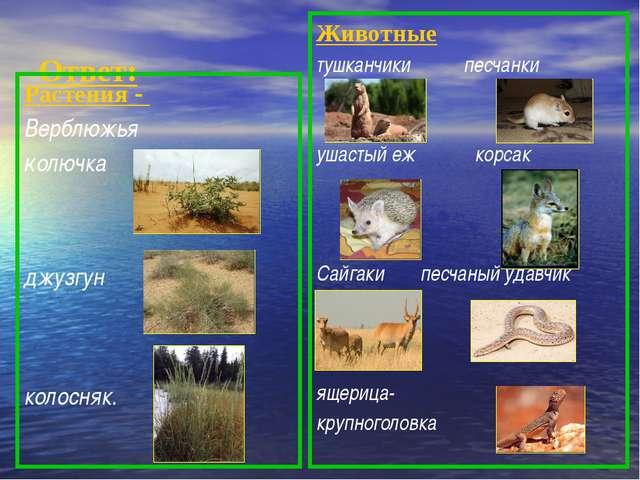 Ответ: Растения - Верблюжья колючка джузгун колосняк. Животные тушканчики пе...