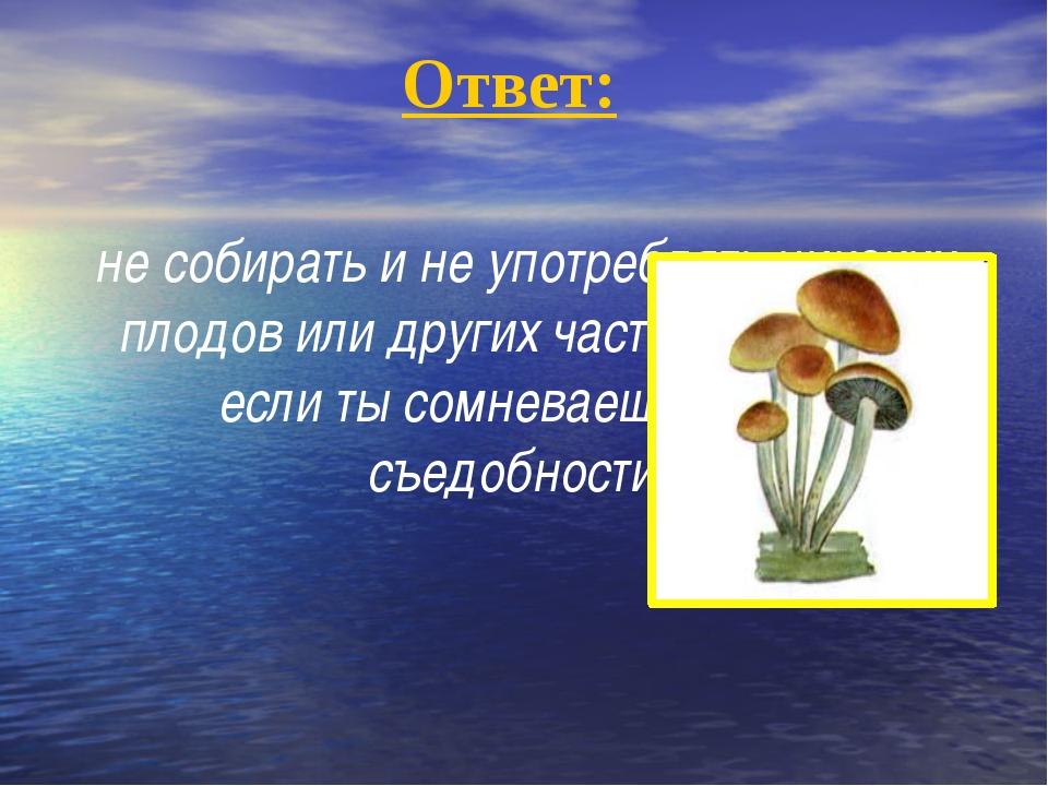 Ответ: не собирать и не употреблять никаких плодов или других частей растени...