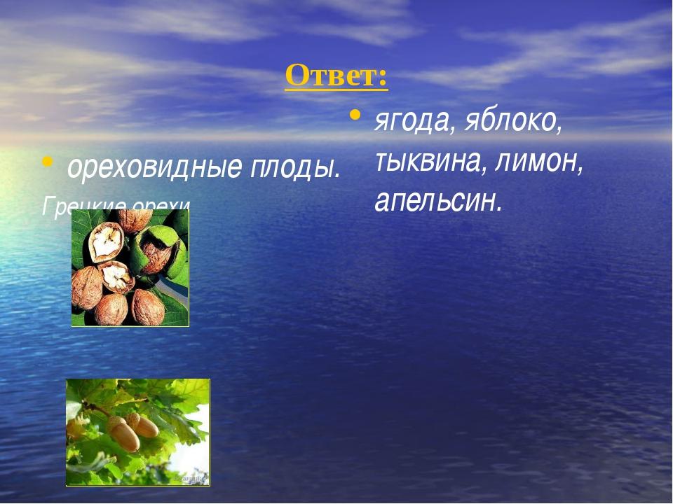 Ответ: ореховидные плоды. Грецкие орехи Желуди ягода, яблоко, тыквина, лимон...