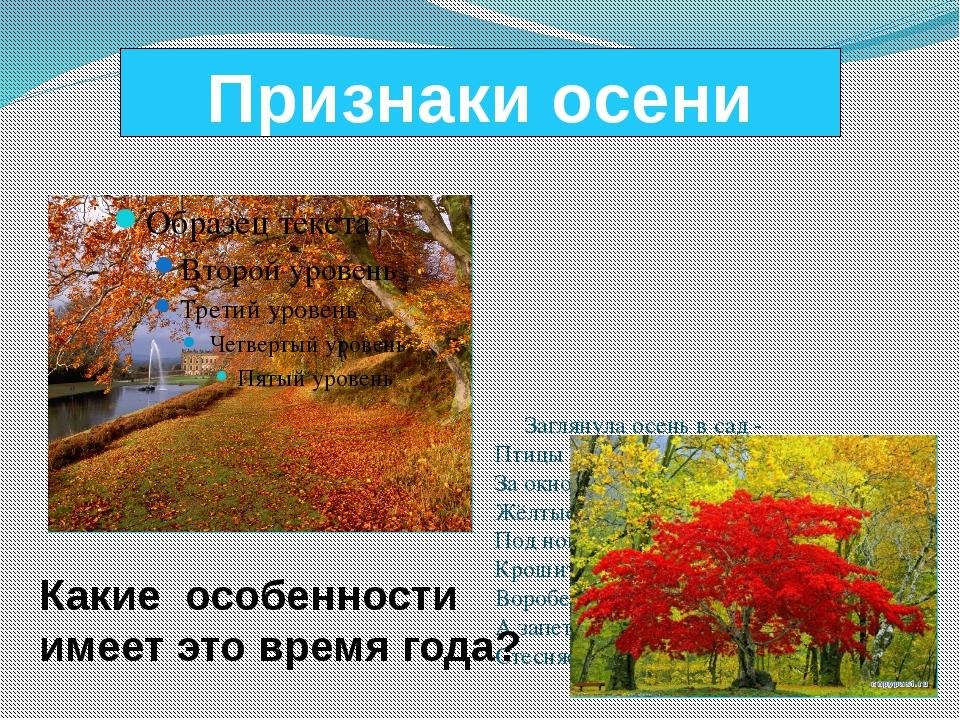 Признаки осени Заглянула осень в сад - Птицы улетели. За окном с утра шуршат...