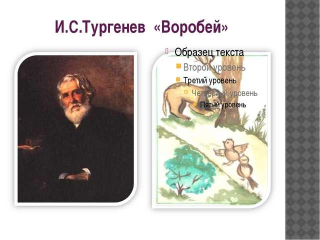 И.С.Тургенев «Воробей»