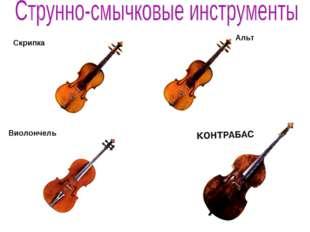 Скрипка Виолончель Альт