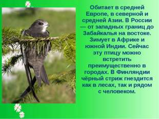Обитает в средней Европе, в северной и средней Азии. В России — от западных г
