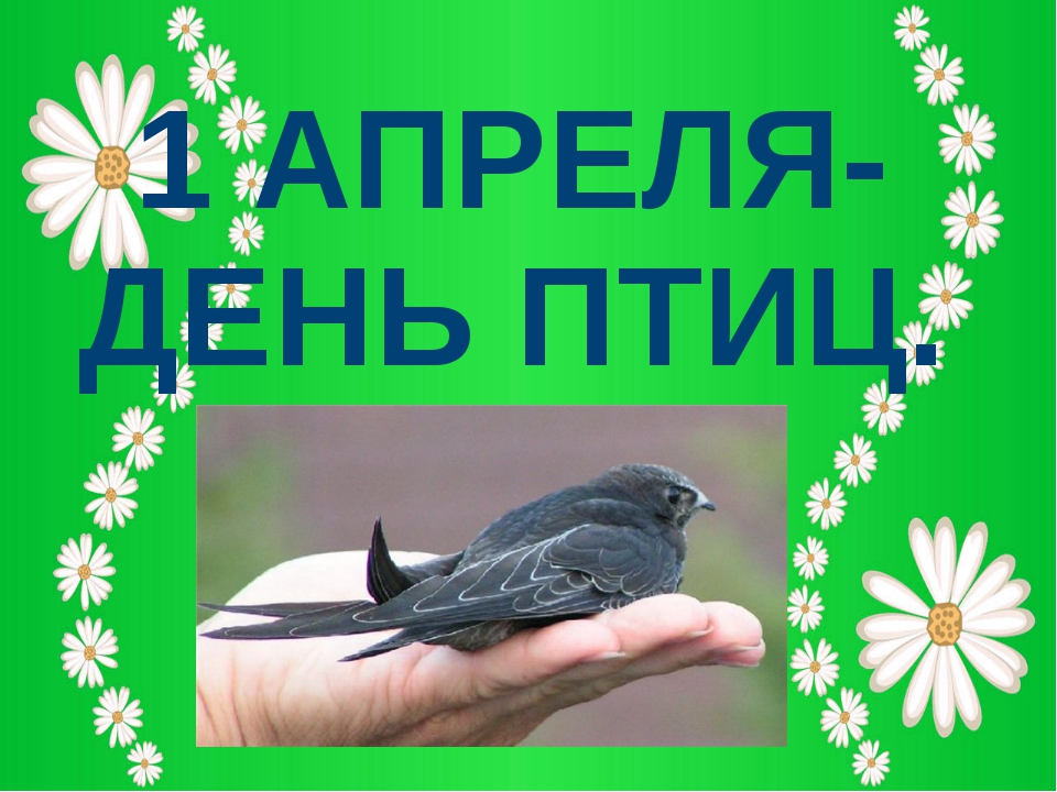 1 АПРЕЛЯ-ДЕНЬ ПТИЦ.