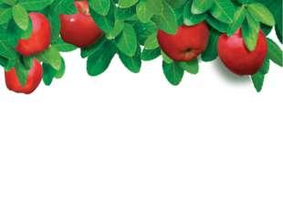 Кто собирает яблоки спиной?