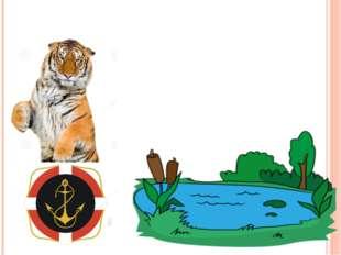 Умеют ли тигры плавать?