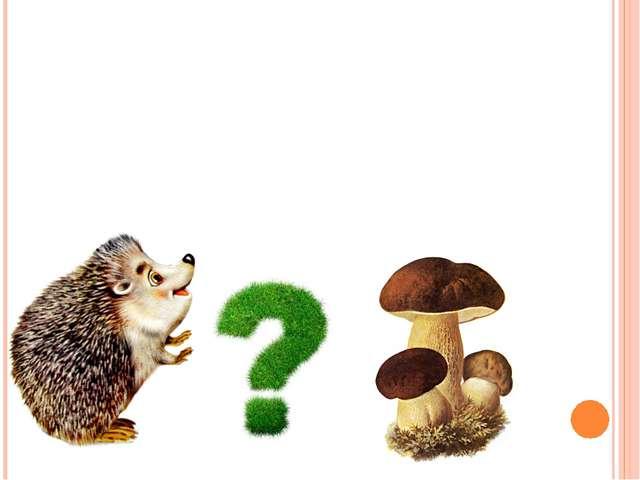 Ест ли еж грибы?