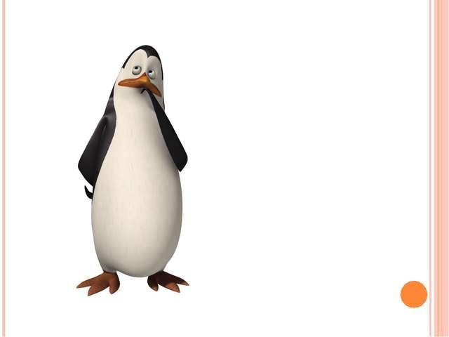 Пингвин – это птица?