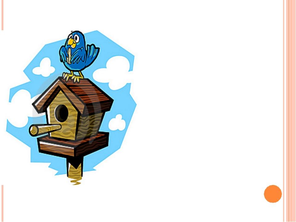 Зимуют ли птицы в скворечниках?
