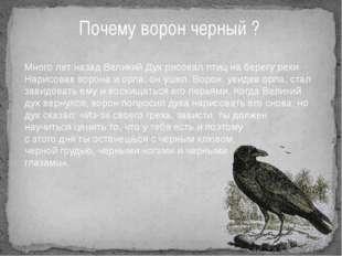 Почему ворон черный ? Много лет назад Великий Дух рисовал птиц на берегу реки
