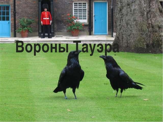 Вороны Тауэра