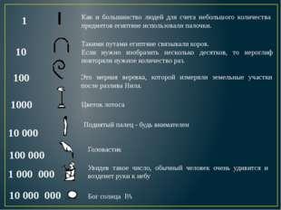 Число 5 записывалось знаком Числа 6, 7, 8, 9 обозначались сочетаниями вертика