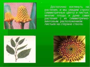 Достаточно взглянуть на растения, и мы увидим строго симметричные цветы и ли
