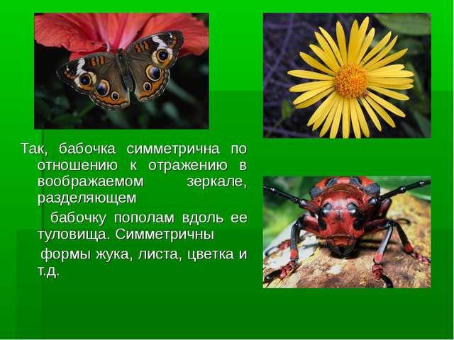 Так, бабочка симметрична по отношению к отражению в воображаемом зеркале, раз...