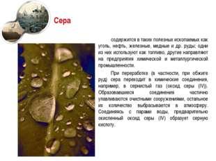 Сера содержится в таких полезных ископаемых как уголь, нефть, железные, медны