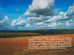 Природные источники оксидов азота - это грозовые разряды и молнии, а также б
