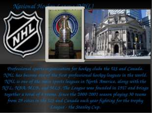Professional sports organization for hockey clubs the US and Canada. NHL has