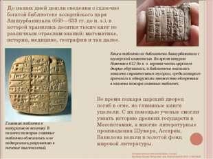 До наших дней дошли сведения о сказочно богатой библиотеке ассирийского царя
