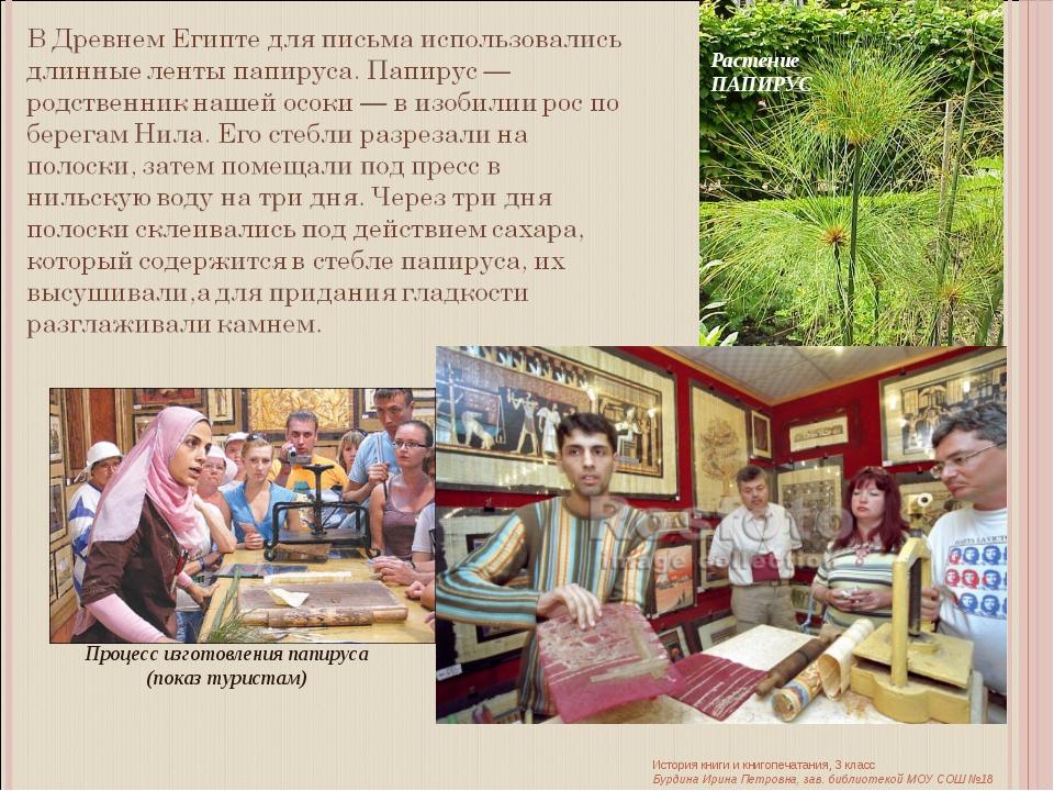 Процесс изготовления папируса (показ туристам) Растение ПАПИРУС История книги...