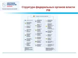 Структура федеральных органов власти РФ