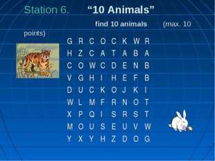 "Station 6. ""10 Animals"" find 10 animals (max. 10 points) G	R	C	O	C	K	W	R 	 H"