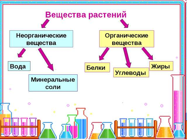 Вещества растений Неорганические вещества Органические вещества Вода Минераль...
