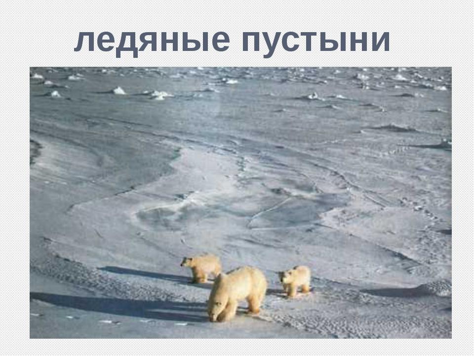 ледяные пустыни