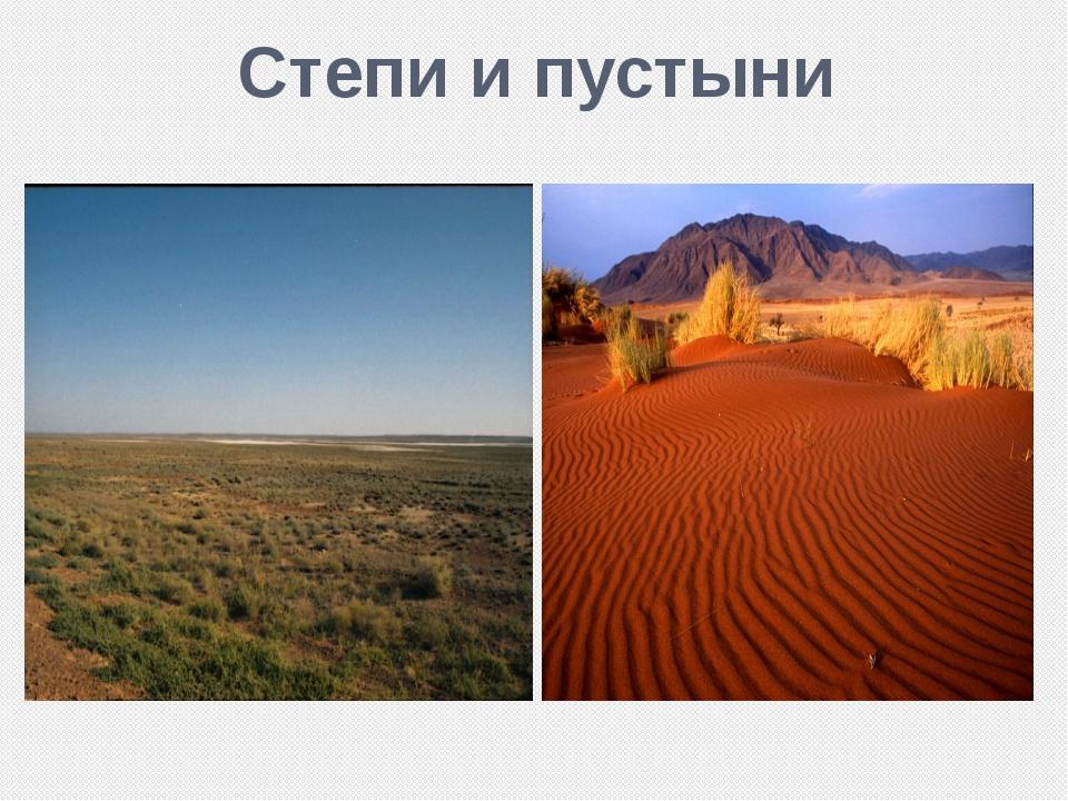 Степи и пустыни