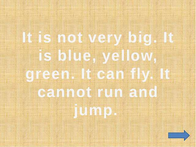 It is not very big. It is blue, yellow, green. It can fly. It cannot run and...
