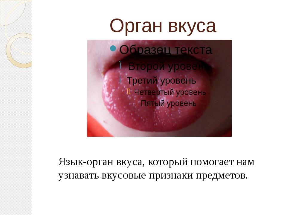 Орган вкуса Язык-орган вкуса, который помогает нам узнавать вкусовые признаки...