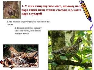 1. У этих птиц вкусное мясо, поэтому на Руси пара таких птиц стоила столько ж