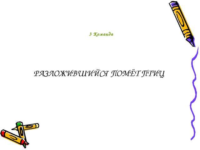 РАЗЛОЖИВШИЙСЯ ПОМЁТ ПТИЦ 3 Команда