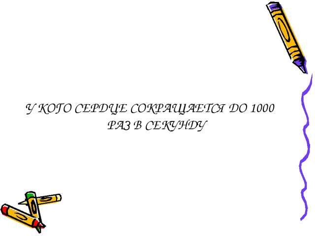 У КОГО СЕРДЦЕ СОКРАЩАЕТСЯ ДО 1000 РАЗ В СЕКУНДУ