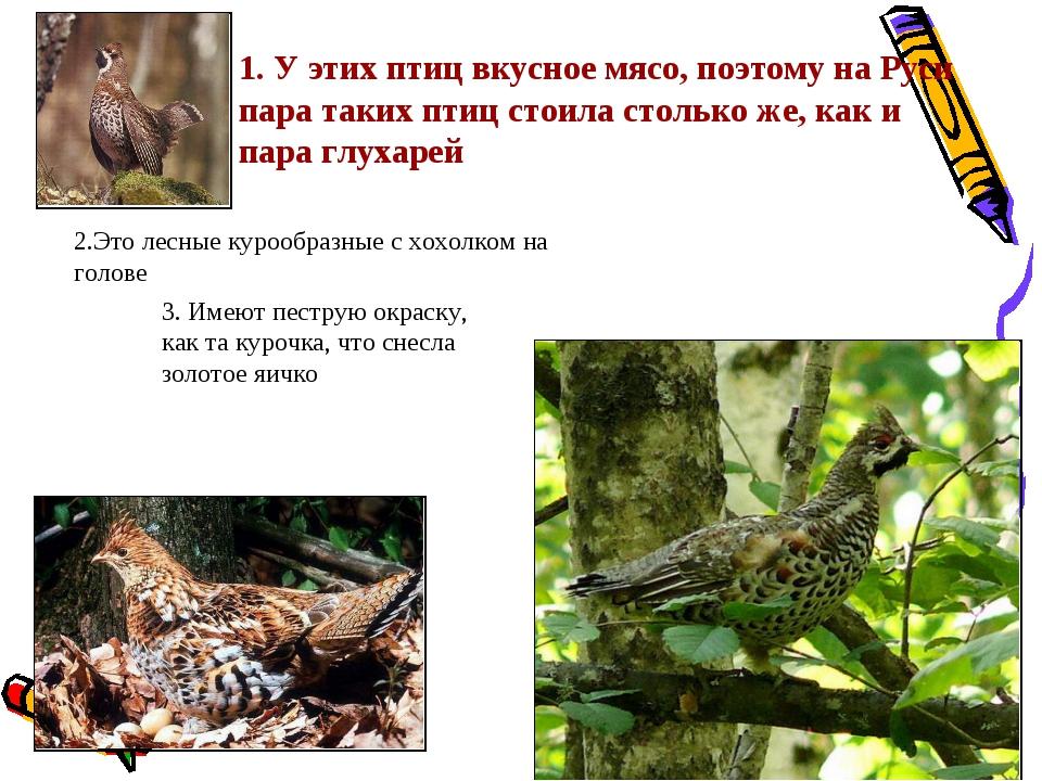 1. У этих птиц вкусное мясо, поэтому на Руси пара таких птиц стоила столько ж...