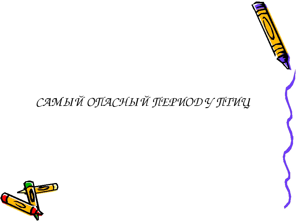 САМЫЙ ОПАСНЫЙ ПЕРИОД У ПТИЦ