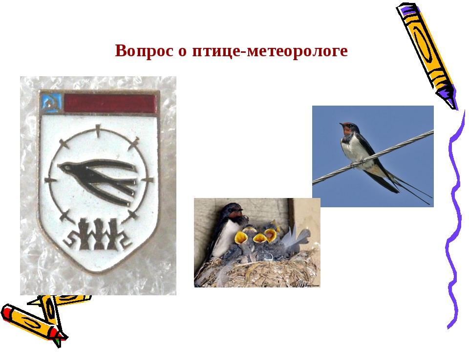 Вопрос о птице-метеорологе