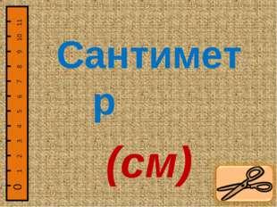 Сантиметр (см)