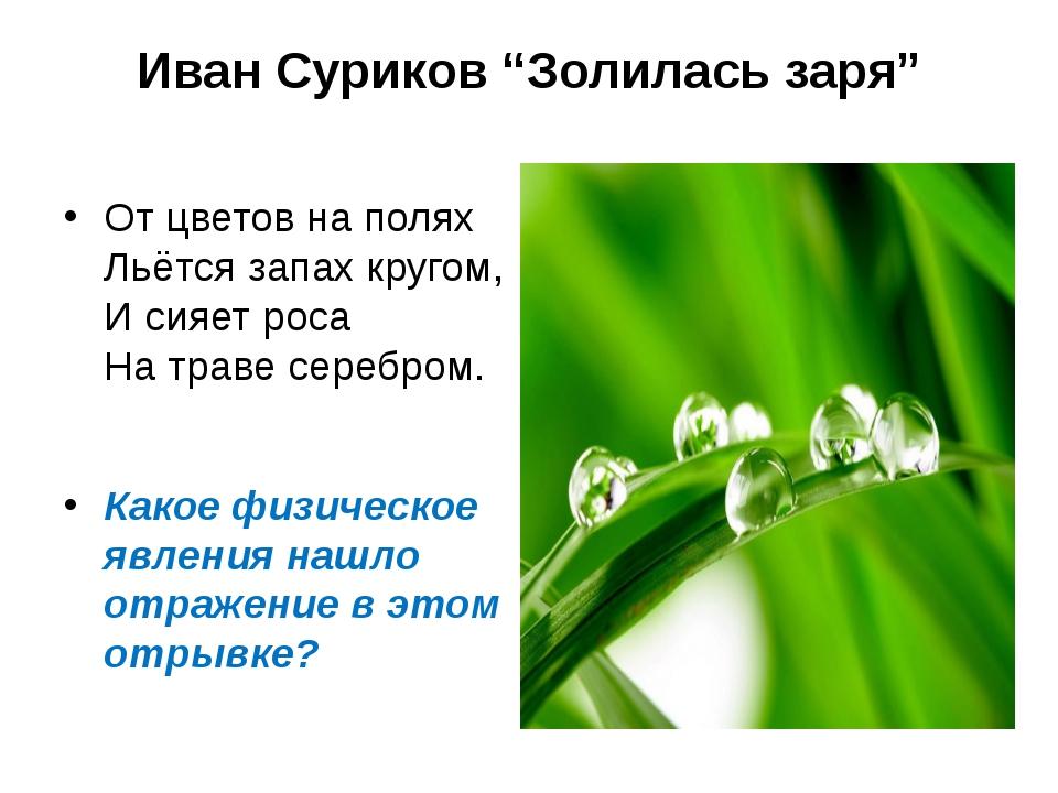 """Иван Суриков """"Золилась заря"""" От цветов на полях Льётся запах кругом, И сияет..."""
