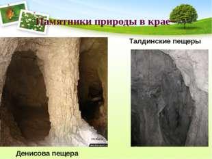 Памятники природы в крае– Талдинские пещеры Денисова пещера